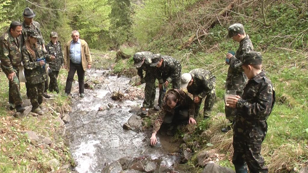 Зариблення гірського потоку «Павлик» (Богданське лісництво) мальками форелі струмкової